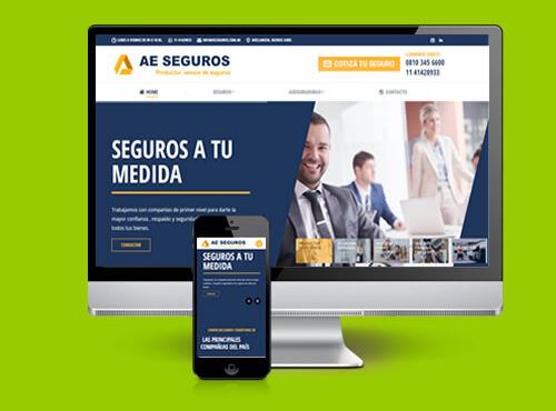AE SEGUROS – Productores y Asesores